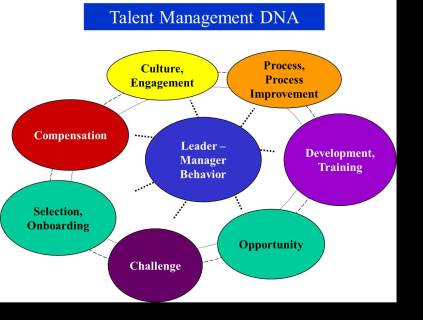 Talent Management DNA
